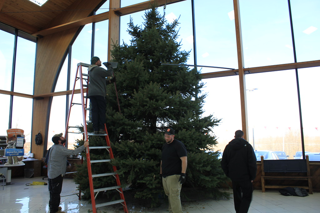 . Charles Pritchard - Oneida Daily Dispatch Crews set up the Christmas tree at Nye Automotive on Route 5 in Oneida on Tuesday, Nov. 28, 2017, in preparation for the annual Share a Caring Christmas to be held on Saturday, Dec. 2, 2017.