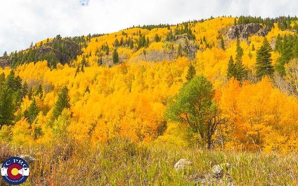 2017 Colorado Fall Colors