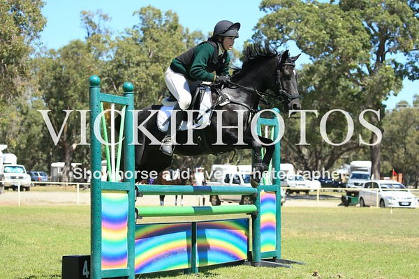 Orange Grove Dressage and Show Jumping Series - 19.3.2017