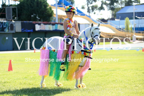 40th Annual APSB WA Branch Pony Show  -  5.3.2017