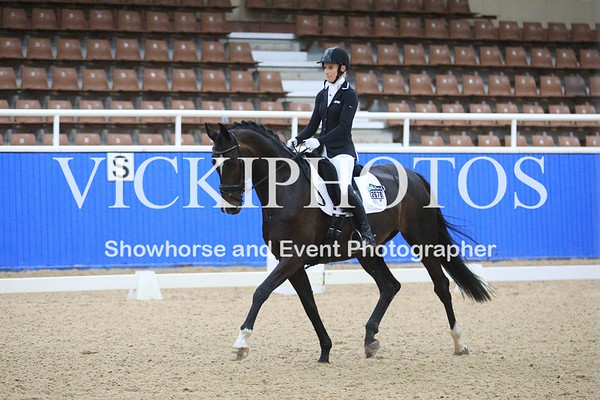 EWA Summer Series Dressage  29.01.2017