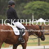 EWA Summer Dressage Series_1341