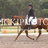 EWA Summer Dressage Series_1340