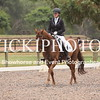 EWA Summer Dressage Series_1337