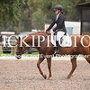 EWA Summer Dressage Series_1334