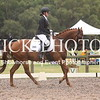 EWA Summer Dressage Series_1339