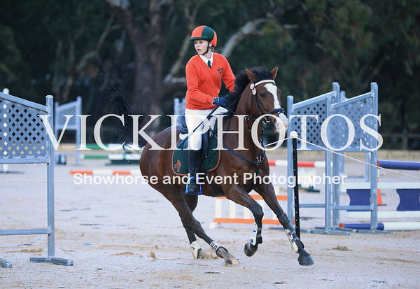 PCAWA Go for 2&5 State Showjumping Championships  -  21st May
