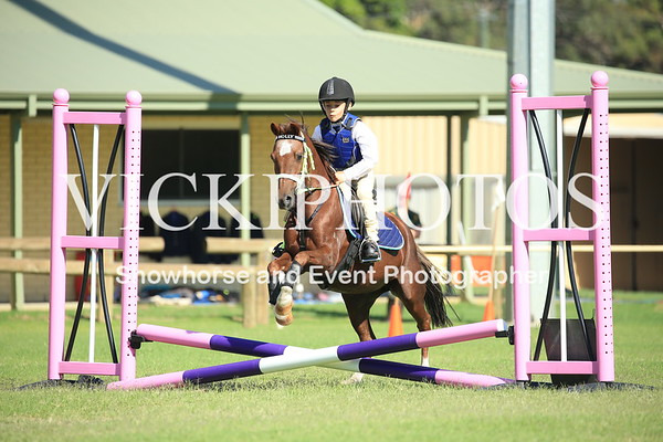 Gosnells Gymkhana - 6th March 2017