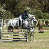 Serpentine Jump-Cross-5643