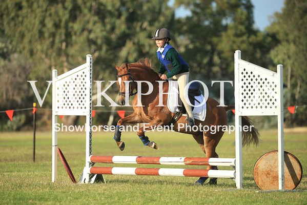 Serpentine Showjumping Series 2 - 6th May
