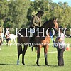 SH&PC Twilight Gymkhana - 18 2_419