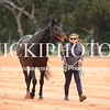 Working Equitation - 15 7 2017_1100