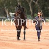 Working Equitation - 15 7 2017_1099