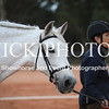 Working Equitation - 15 7 2017_1088