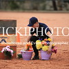 Working Equitation - 15 7 2017_1098