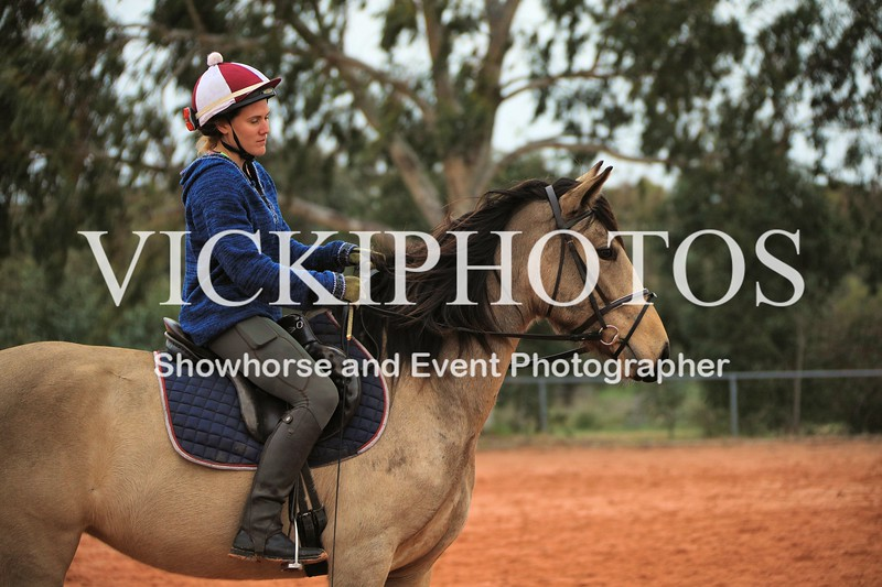 Working Equitation - 15 7 2017_719