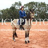 Working Equitation - 15 7 2017_722