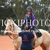 Working Equitation - 15 7 2017_15