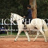 Working Equitation - 15 7 2017_440