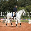 Working Equitation - 15 7 2017_443