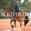 Working Equitation - 15 7 2017_427