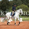 Working Equitation - 15 7 2017_444
