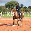 Working Equitation - 15 7 2017_435