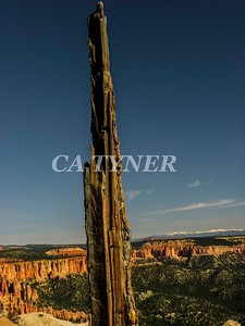 Bryce Canyon National Park Utah 8