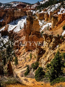 Bryce Canyon National Park Utah 9