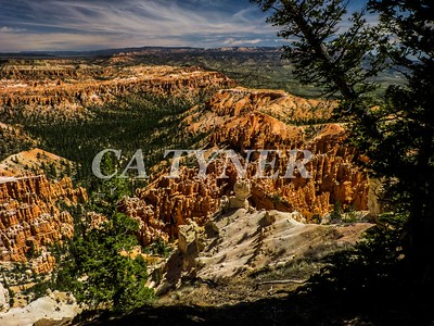 Bryce Canyon National Park Utah 15