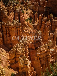 Bryce Canyon National Park Utah 16