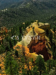 Bryce Canyon National Park Utah 12