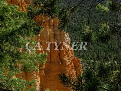 Bryce Canyon National Park Utah 4