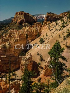 Bryce Canyon National Park Utah 14