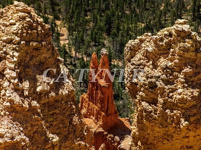 Bryce Canyon National Park Utah 19