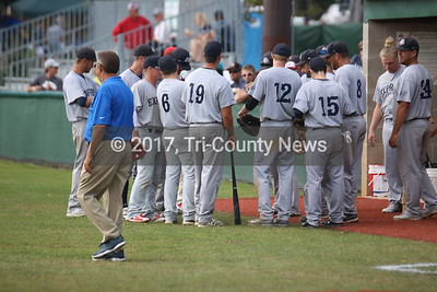 2017 State Amateur Baseball Tournament