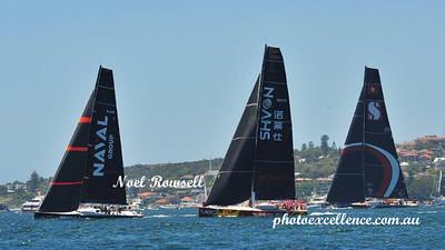 Naval Group, Noahs ll, Scallywag NRR_2565