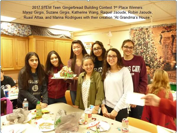 2017 Teen STEM event