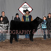 17NewCastle_3rdHeifer_LDH_1009c