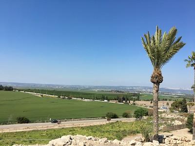 26-megiddo