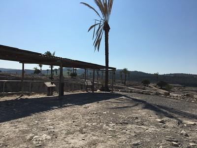28-megiddo