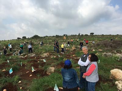 09-planting-trees