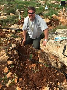 06-planting-trees