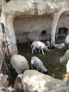 14-nazareth-village