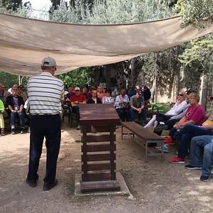 06-garden-of-gethsemane