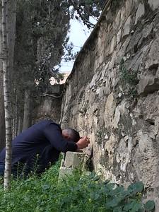 09-garden-of-gethsemane