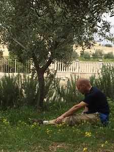 11-garden-of-gethsemane