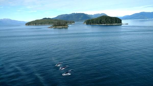 2017TravelerContest-FrankieDotson-Alaska-TravelMasters-454485