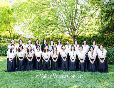 2017 Valley Voices