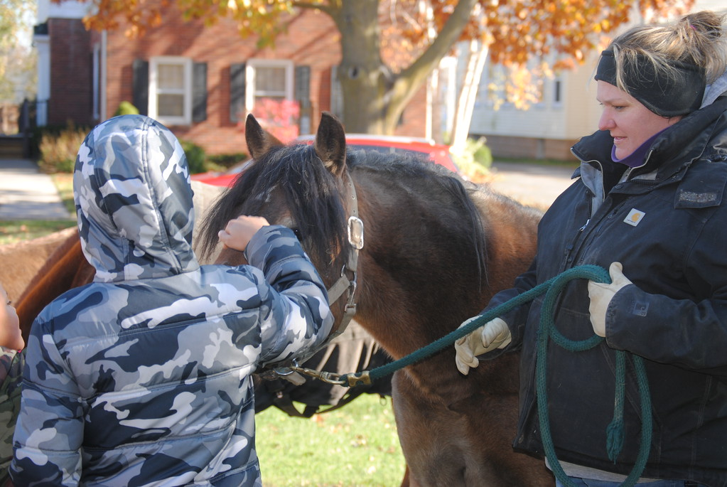 . Leah McDonald - Oneida Daily Dispatch Children pet horses at the Oneida Public Library on Saturday, Nov. 11, 2017, during a program about animals that went to war.